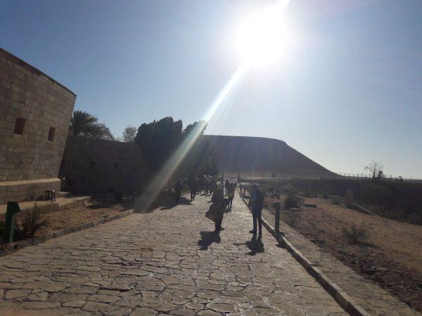 egypt176